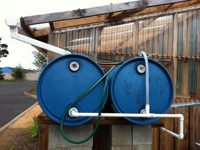 Rain barrels at the Lincoln County Master Gardener demonstration garden